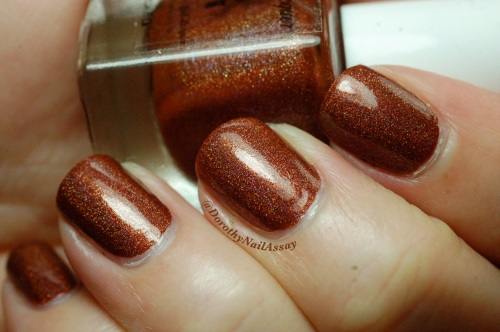 Merida 2,0 princess collection FUN lacquer, indoors no sun.  A very deep chocolate polish slightly holo when there is no direct light  on it.