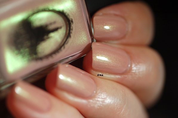 Enchanted polish January 2016 swatch natural light