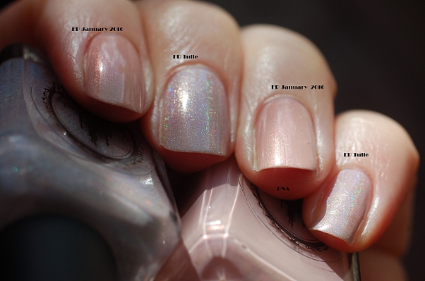 compraison Enchanted Polish Tulle January 2016 au soleil