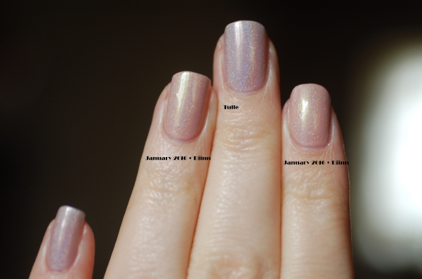 compraison Enchanted Polish Tulle January 2016 natural light