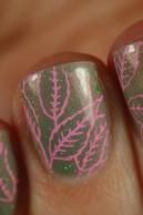 feuille rose sur vert kaki
